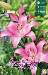 Bilde av Lilium Pink La Hybride