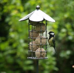 Bilde av Fuglemater til meiseboller på pinne