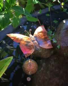Bilde av Flyter Kobber sommerfugl