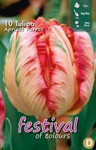 Bilde av Tulipan Apricot Parrot