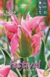 Bilde av Tulipan China Town
