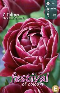 Bilde av Tulipan Dream Touch