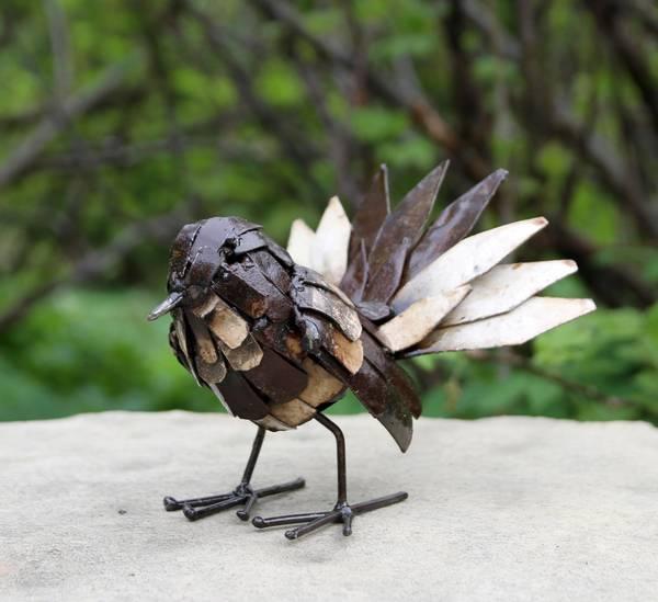 Fantail fugl
