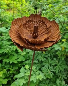 Bilde av 3D blomst Valmue