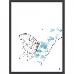Bilde av Sommerfuglen