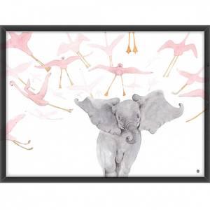 Bilde av Elefanten og flamingoene