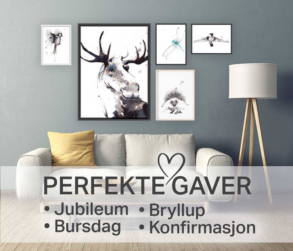 Postere, kunsttrykk og bilder til stue og barnerom