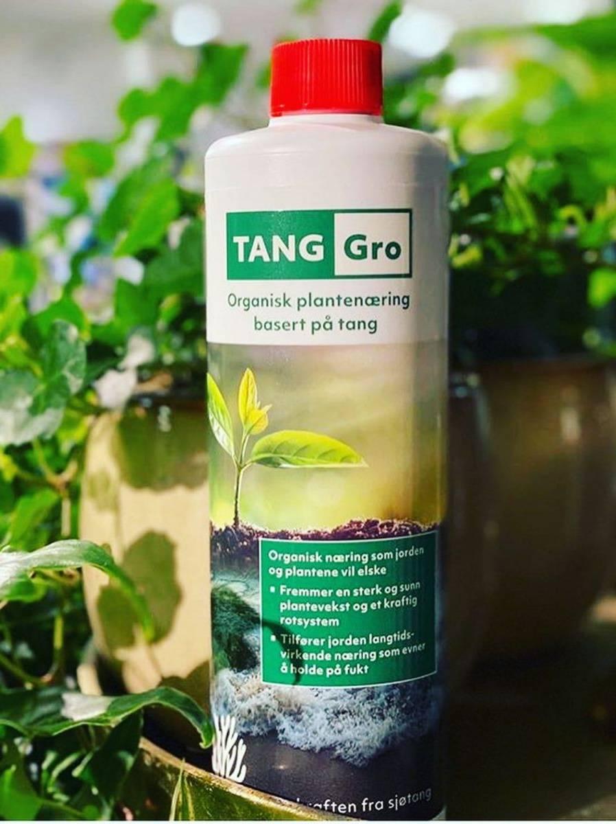 TANG Gro plantenæring av tang, 500ml