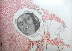Bilde av Brynhild Winther, Namnlaus ape