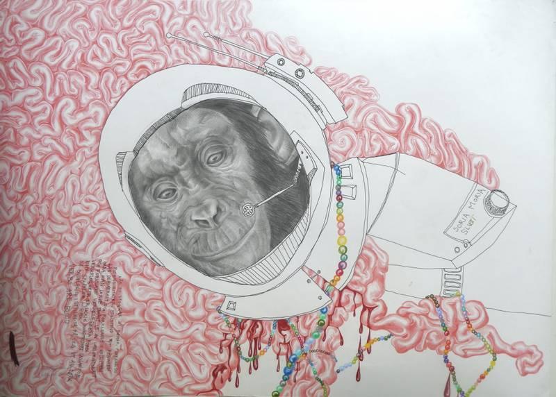 Brynhild Winther, Namnlaus ape