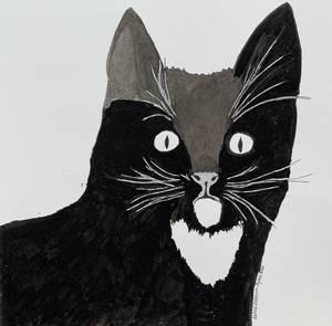 Bilde av Astrid Skaaren-Fystro, Katten Sumba II.