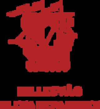 Bilde av HILLESVÅG
