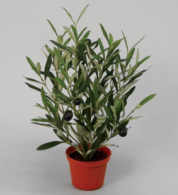 Bilde av Olive kunstig plante 38 cm