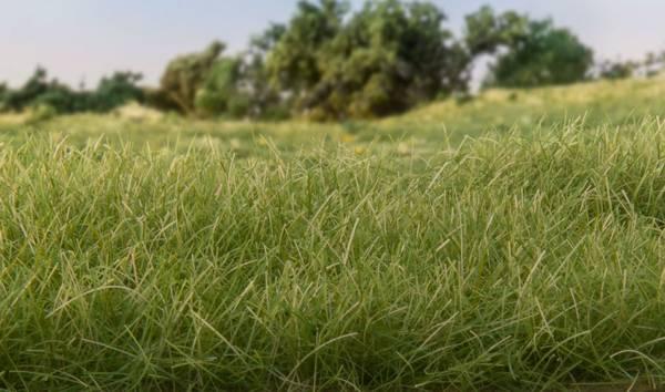 Bilde av Woodland - Field System, static grass, Med Green 7mm