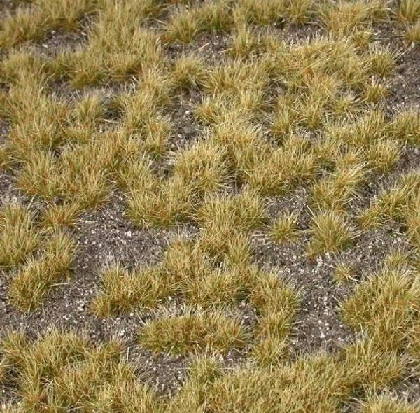 Bilde av MiniNatur - Tilvokst jordbunn, mørk jord (høst)