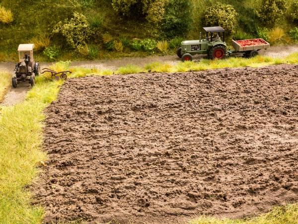 Bilde av Noch - Pløyet jorde med gresstuster