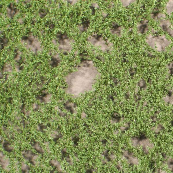 Bilde av MiniNatur - Løvverk, poppel (N+Z skala)
