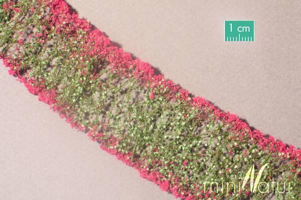 Bilde av MiniNatur - Blomster, lilla