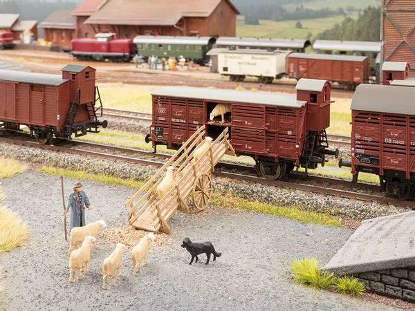Bilde av Noch - Mobil lasterampe til husdyr