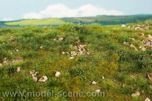 Bilde av Model Scene - Gressmatte, Early Summer, stony