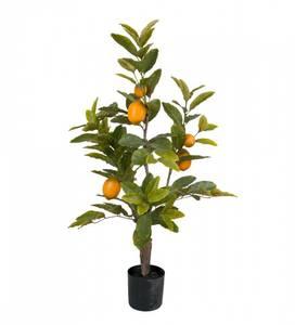 Bilde av Mr Plant Sitrontre 90cm