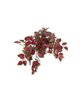 Bilde av Mr plant Palettblad i potte