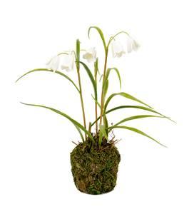 Bilde av Mr Plant kunstig snøklokker