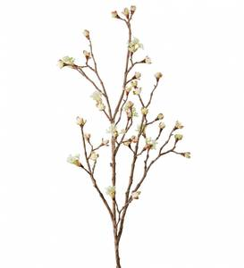 Bilde av Mr Plant Kvist 110cm