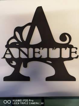 NAVNEPLATE  bokstav og navn