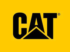 Bilde av Arbeidslampe, CAT CT2115