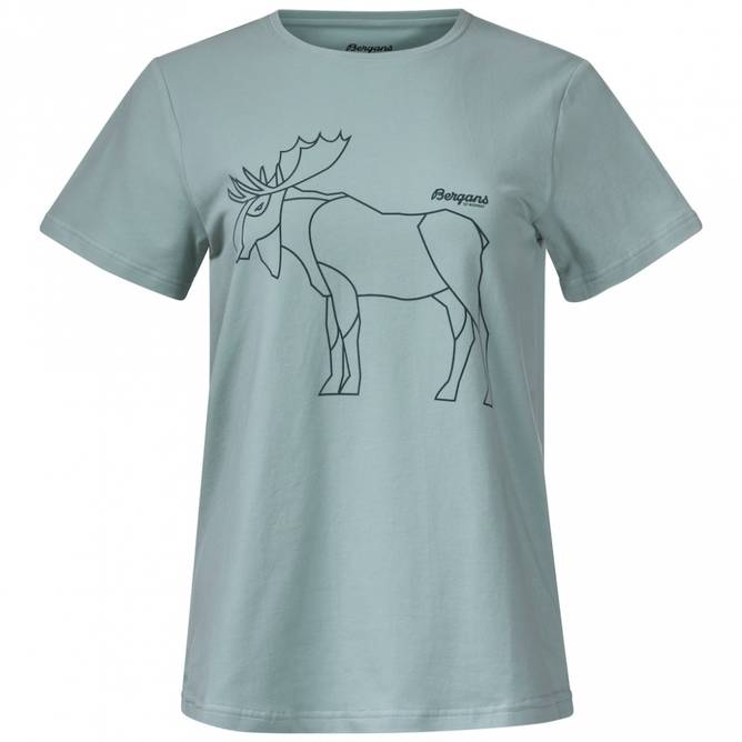 Bilde av Bergans Graphic W T-skjorte Mint