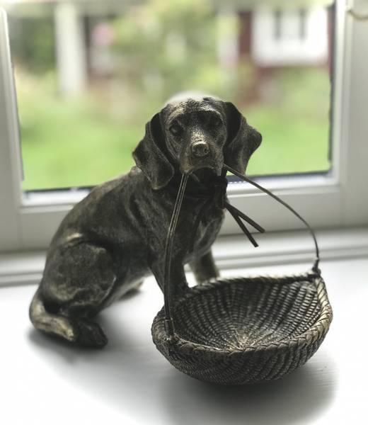 Bilde av Hund med kurv