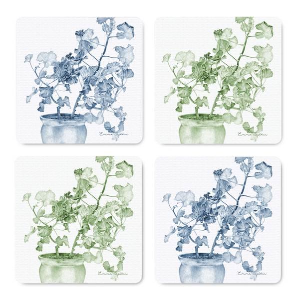 Bilde av Coasters pelargonia