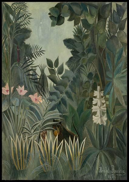 Bilde av The Equatorial Jungle plakat