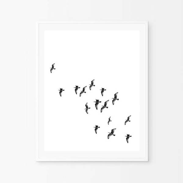 Bilde av BLACK AND WHITE BIRDS POSTER
