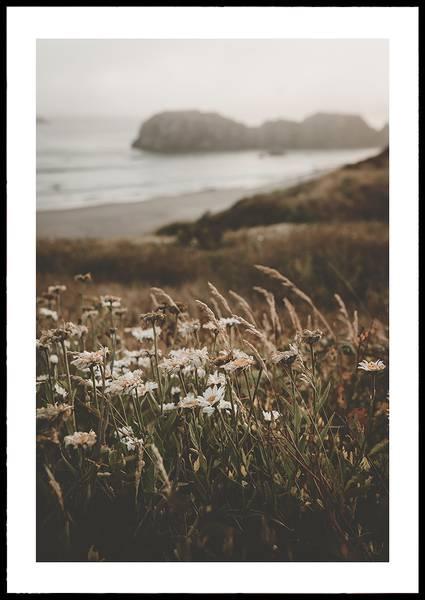 Bilde av Goodbye Daisy plakat