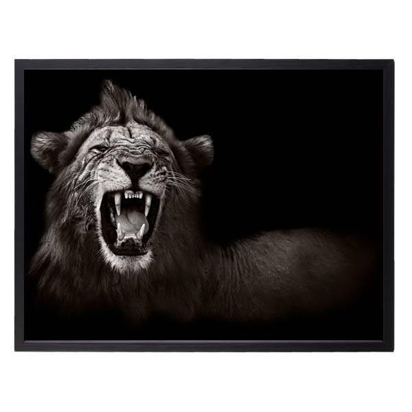 Bilde av LION N02 POSTER