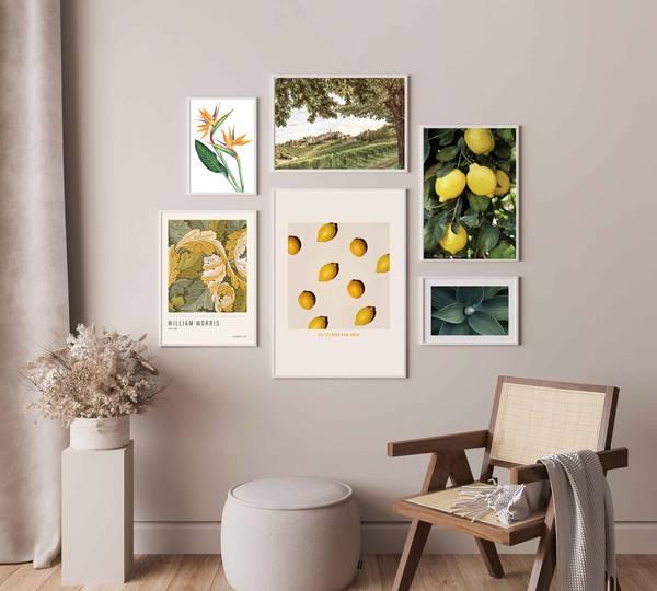 Bilde av Fresh lemons plakat