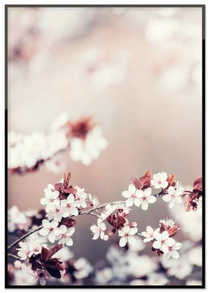 Bilde av FLOWER POSTER