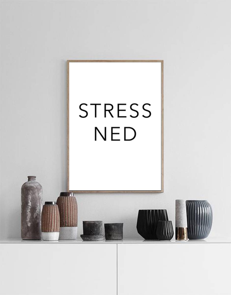 STRESS NED POSTER
