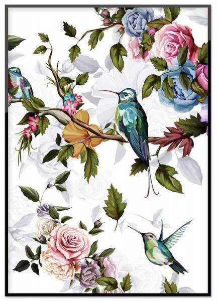 Bilde av HUMMINGBIRD WITH ROSES POSTER