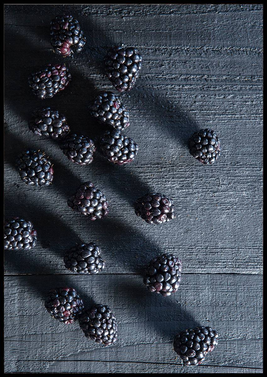 Blackberries plakat