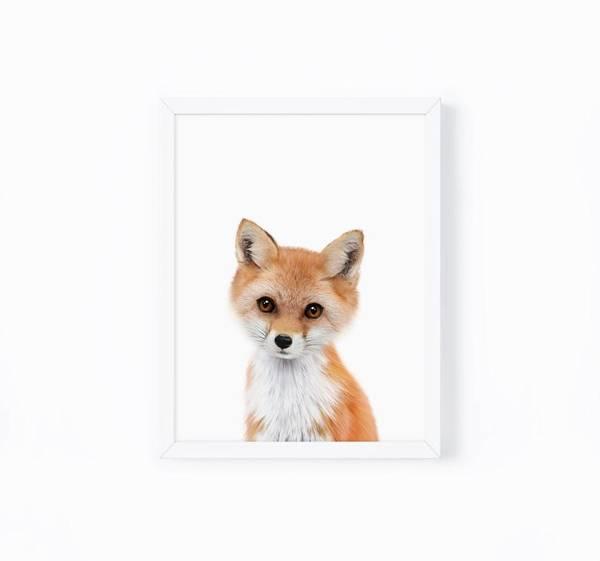 Bilde av KIDS ANIMALS REV POSTER