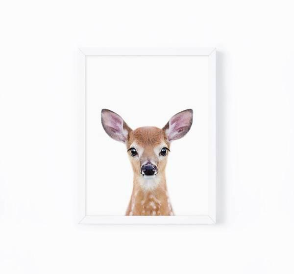 Bilde av KIDS ANIMALS HJORT POSTER