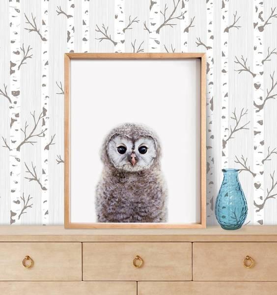 Bilde av KIDS ANIMALS UGLE POSTER
