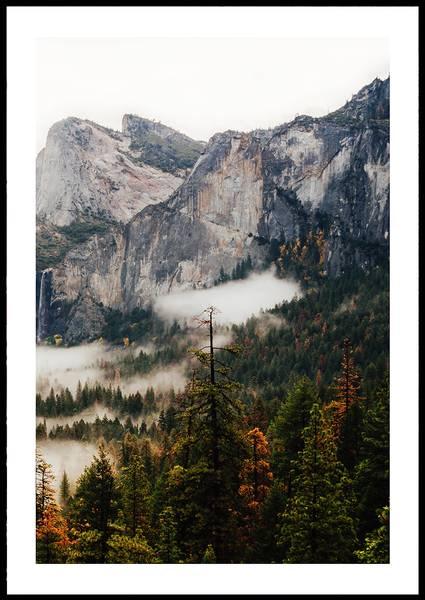 Bilde av Warm forest no 1 plakat