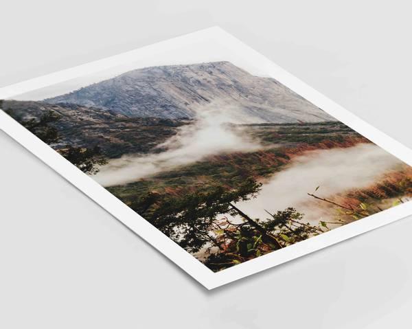 Bilde av Warm forest no 2 plakat