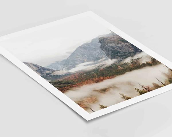 Bilde av Warm forest no 3 plakat