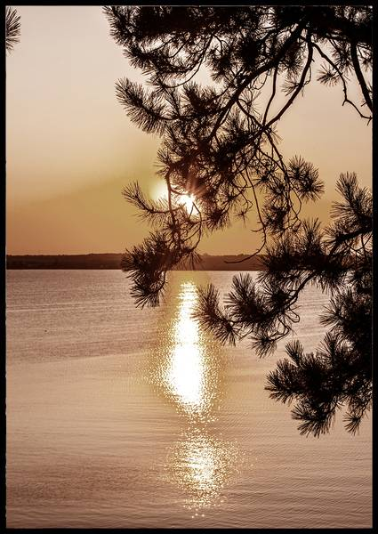 Bilde av When the sun goes down plakat