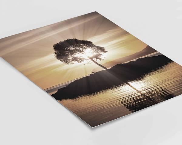 Bilde av Sun is shining plakat